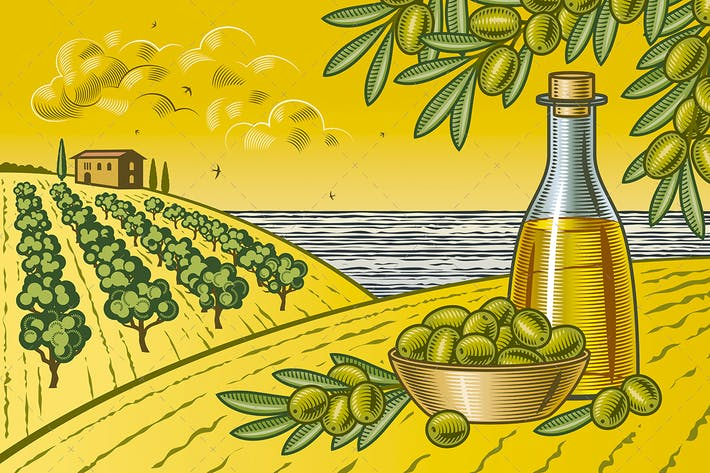 Thumbnail for Olive Harvest Landscape