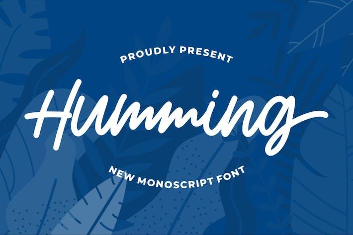 Thumbnail for Tarareo | Monoscript Font