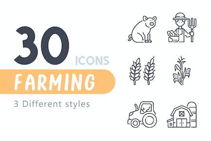 30 Conjunto de iconos de la agricultura