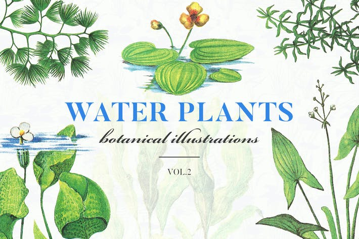 Thumbnail for Water Plants Vol.2