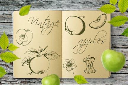 Kit de Manzanas Vintage