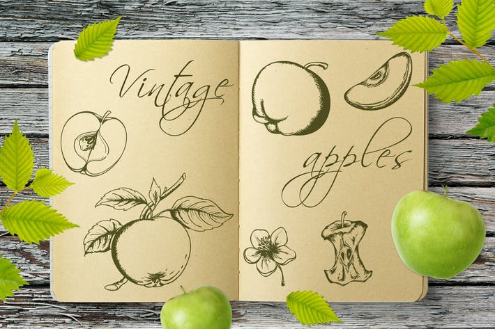 Thumbnail for Set of Vintage Apples