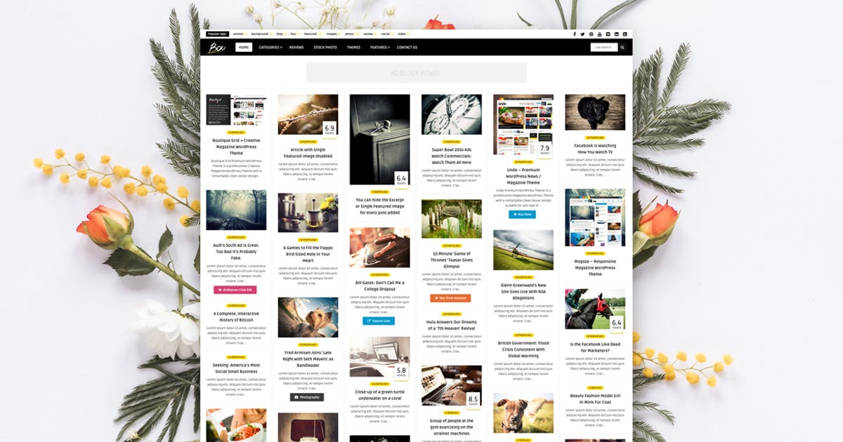 Download Bou - Personal News Review / Magazine Theme by An-Themes
