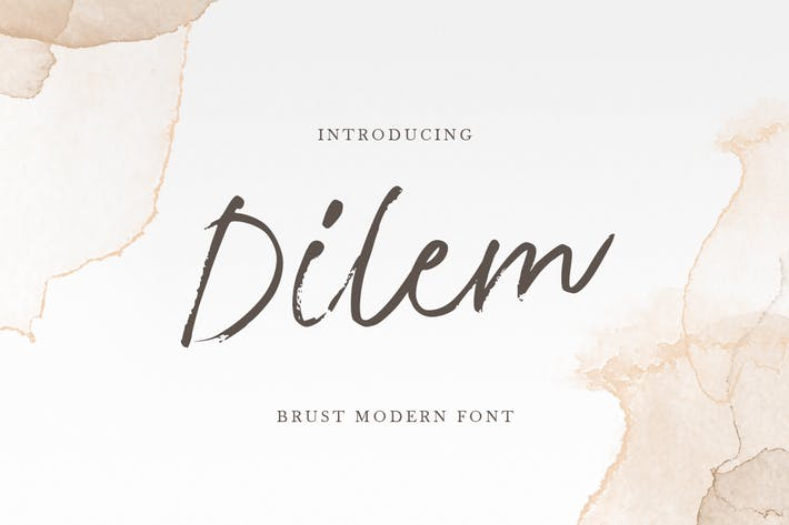Dilem - Fuente de pincel para guión de belleza