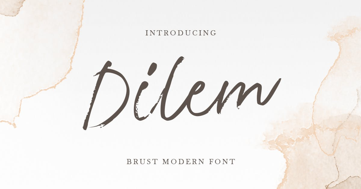 Download Dilem - Beauty Script Brush Font by HamzStudio