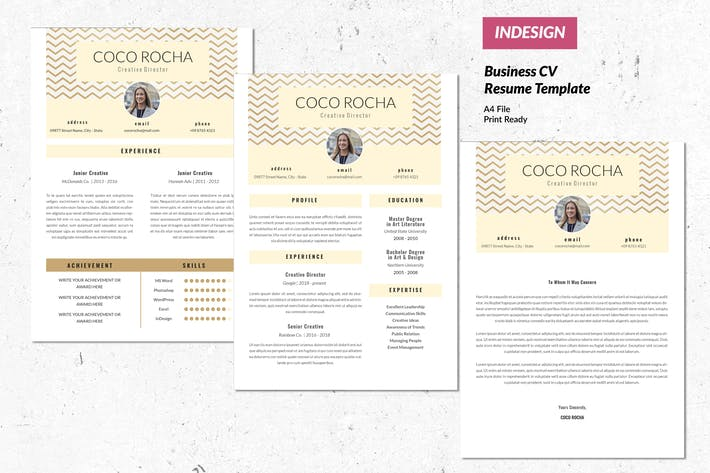 Thumbnail for Creative Director CV Resume Template Vol. 51