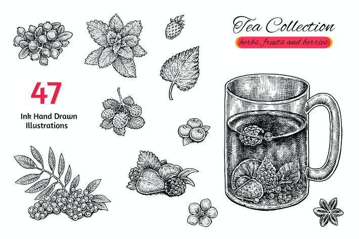 Thumbnail for Tea Collection