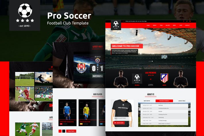 Thumbnail for Pro Soccer - Football Club Template