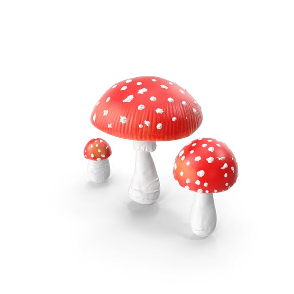 Thumbnail for Amanita Mushrooms Set