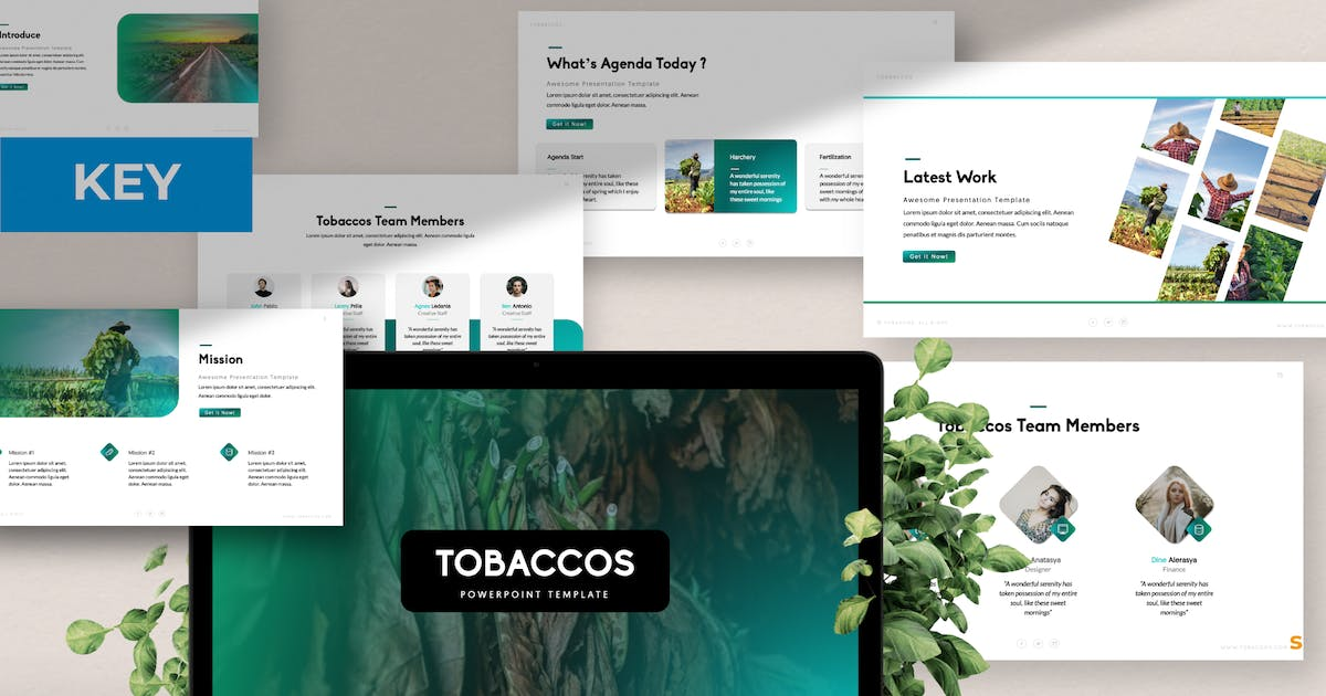 Download Tobaccos Creative Business Keynote by templatehere