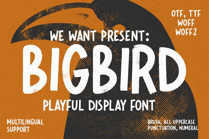 Thumbnail for Fuente de visualización juguetona Bigbird