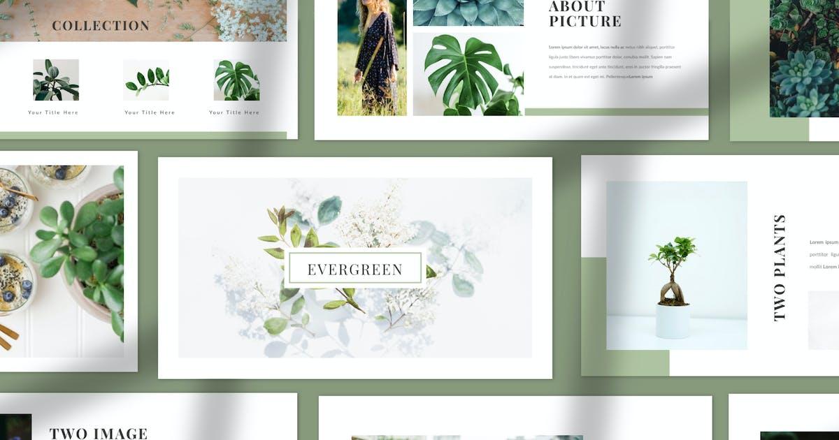 Download Evergreen - ECO Keynote by dirtylinestudio
