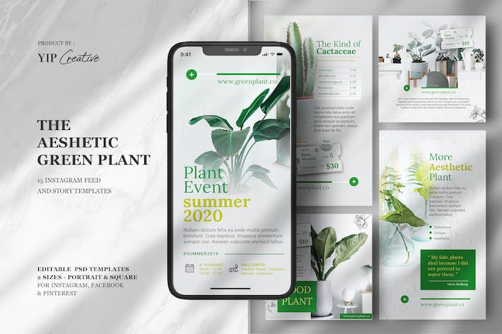 Thumbnail for Green Event - Instagram Feed & Story