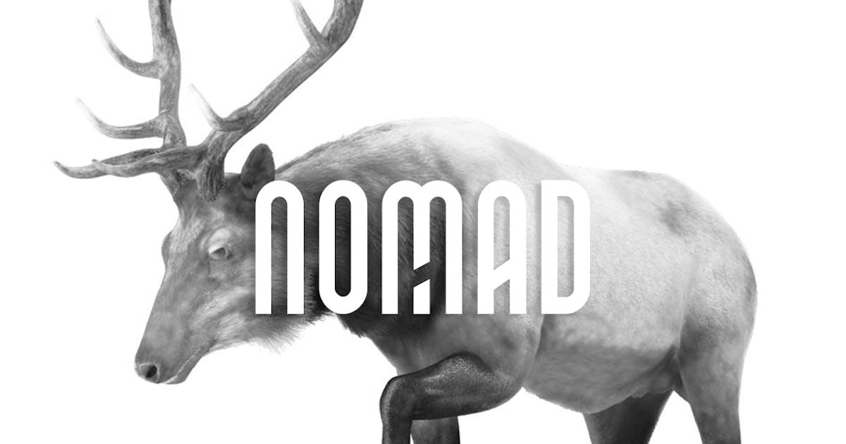 Download NOMAD - Unique Display / Monogram / Logo Typeface by designova