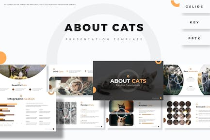 About Cats - Presentation Template