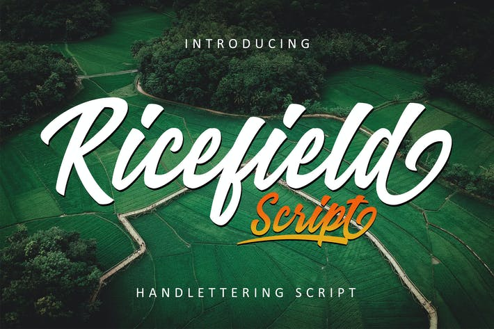 Thumbnail for Ricefield - Script RS