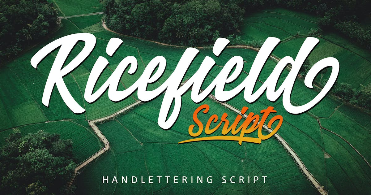 Download Ricefield - Script by Rometheme