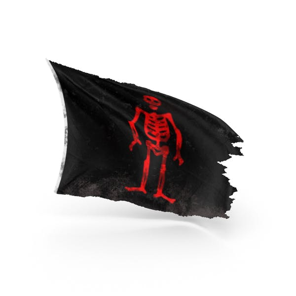 Cover Image for Pirate Flag