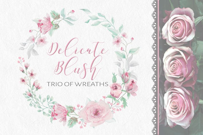 Thumbnail for Delicate Blush: Trio of Watercolor Wreaths