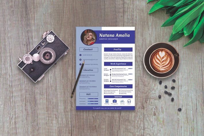 Thumbnail for CV Resume Professional Template Vol. 07