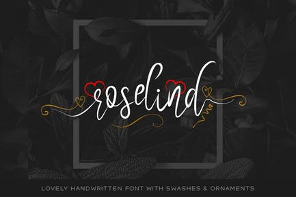 Roselind Handwritten Font with Swashes & Ornaments