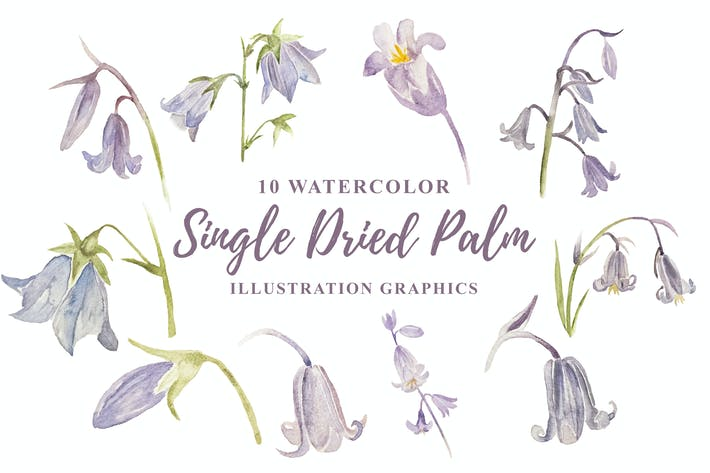 Thumbnail for 10 Watercolor Bluebell Flower Illustration