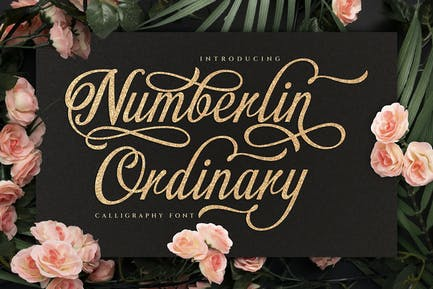 Numberline Ordinary - Script Font