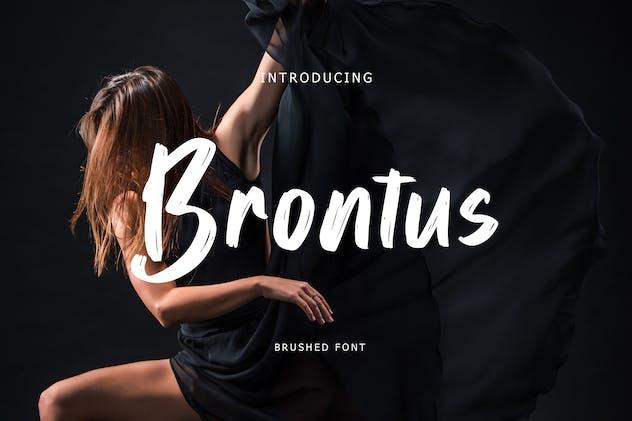 Brontus Brush Font - product preview 6
