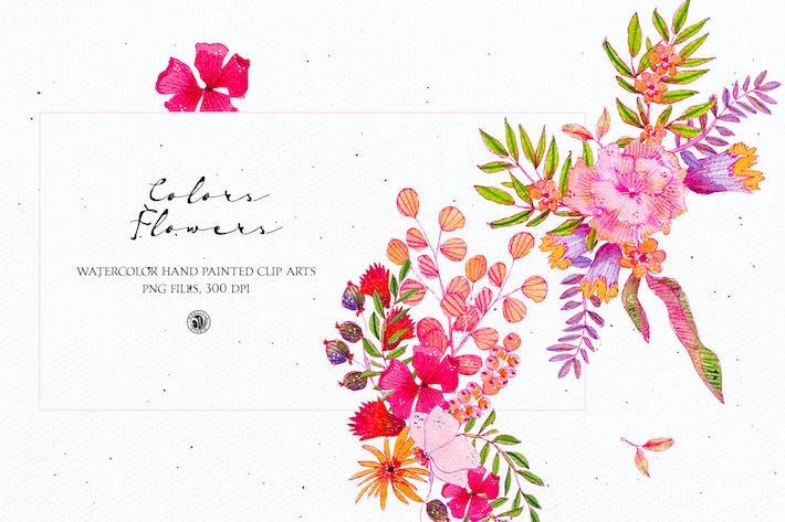 Цвета Цветы - акварель набор