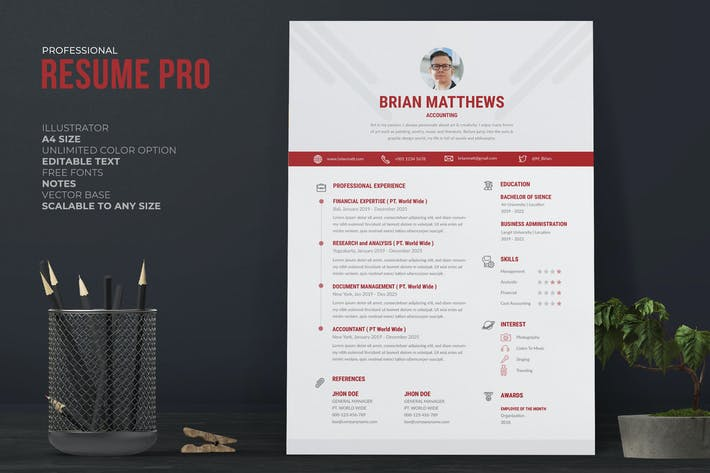 Clean Resume / CV Pro With Red Accent