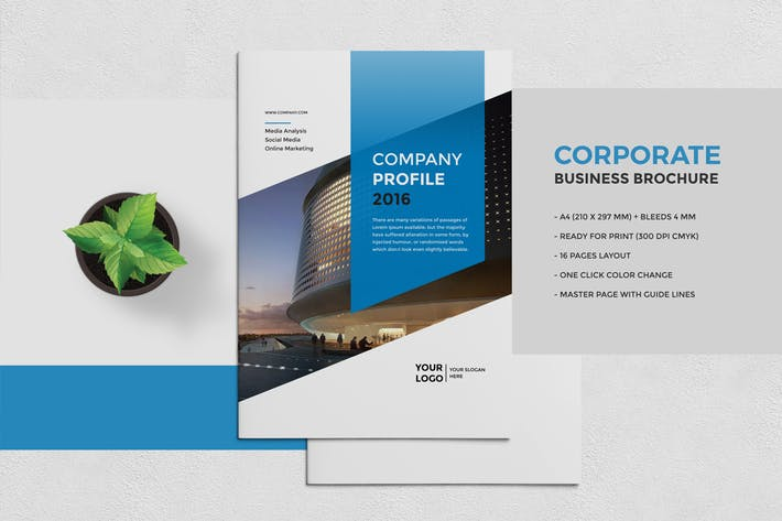 Cover Image For Corporate Business Brochure 16 Pages