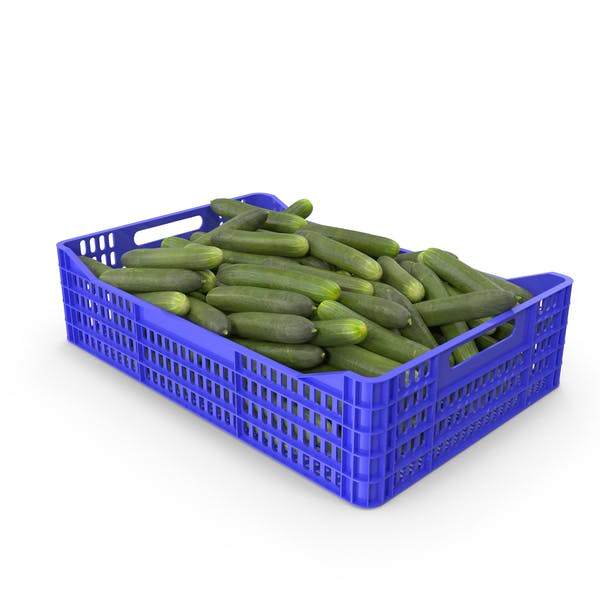 Cucumbers in Plastic Crate
