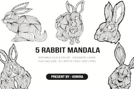 5 Conejo Mandala | Ilustración de Diseño