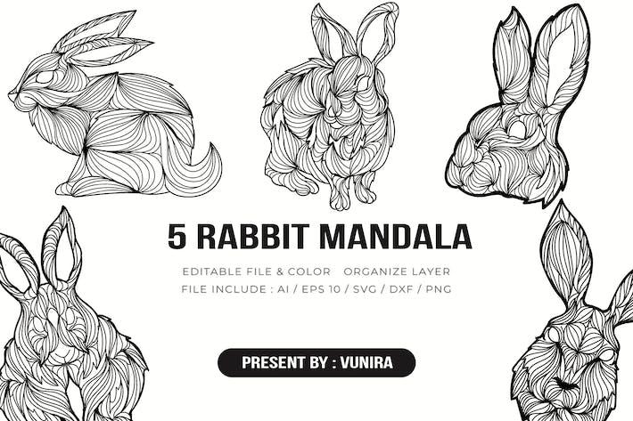 Thumbnail for 5 Rabbit Mandala | Design Illustration