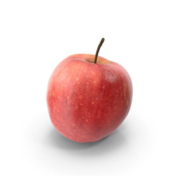 Thumbnail for Fuji Apple