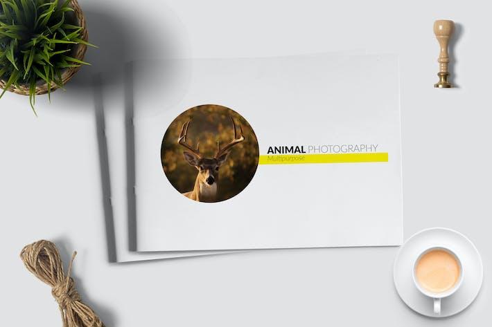 Animal Photograph - Brochure