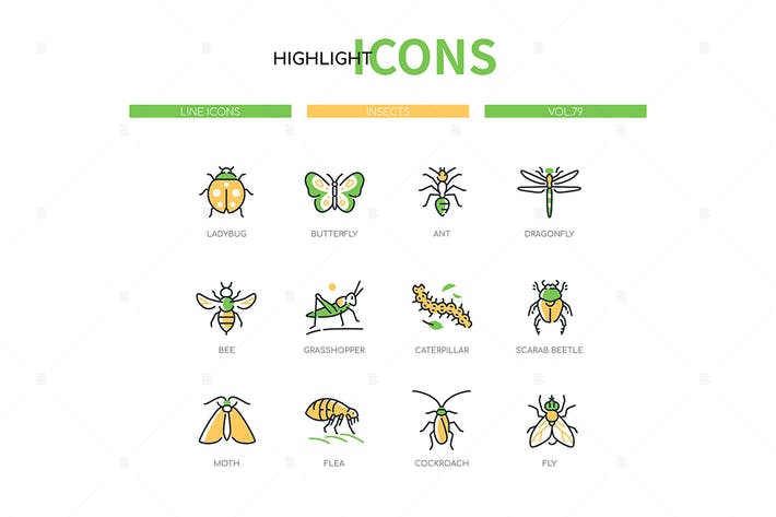 Insects collection - line design style icons