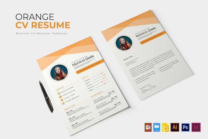 Thumbnail for The Orange   CV & Resume
