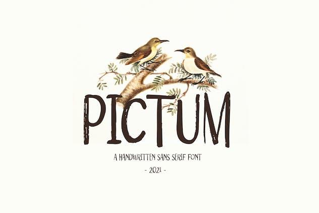 Pictum - Handwritten