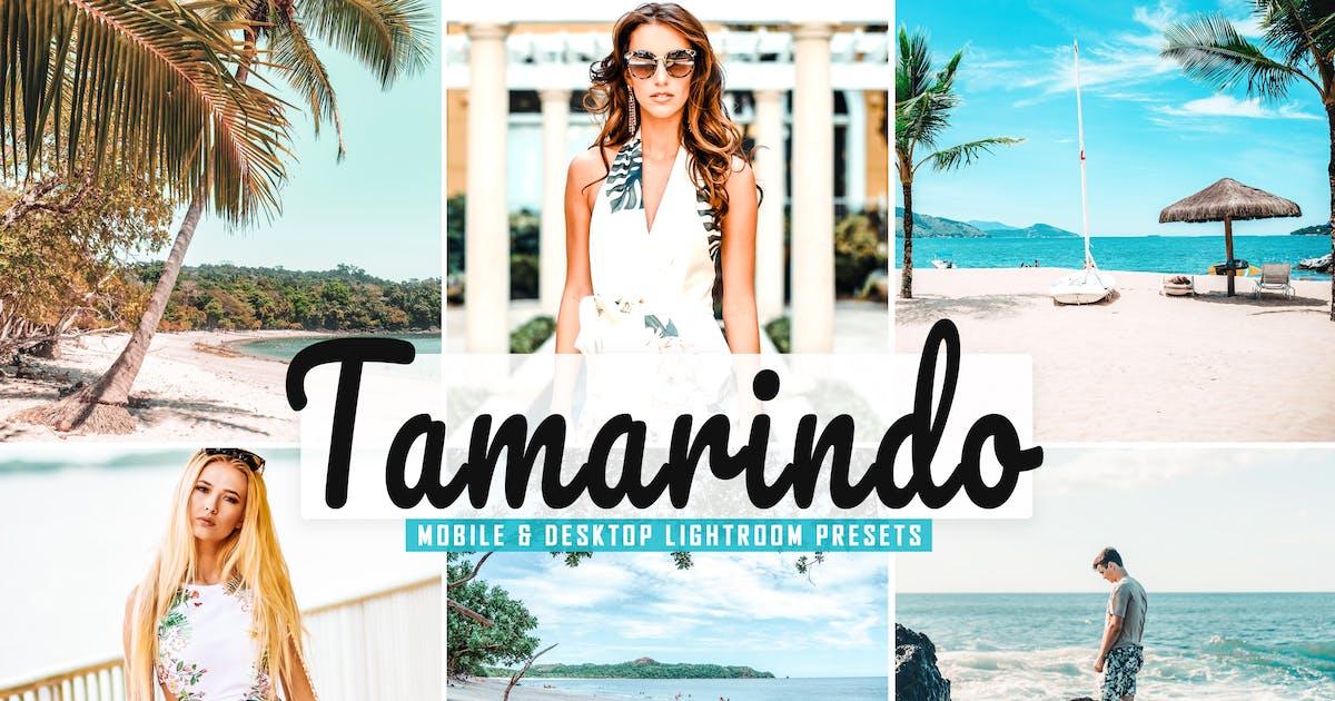 Download Tamarindo Mobile & Desktop Lightroom Presets by creativetacos