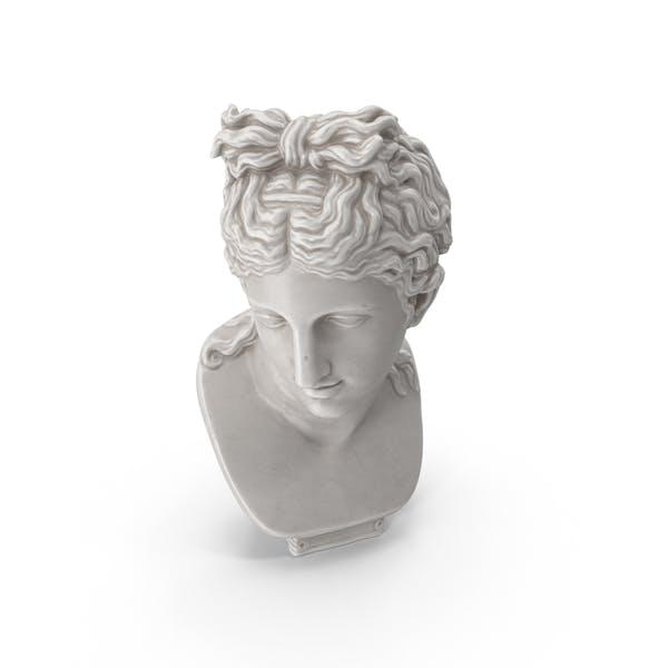 Busto de Venus