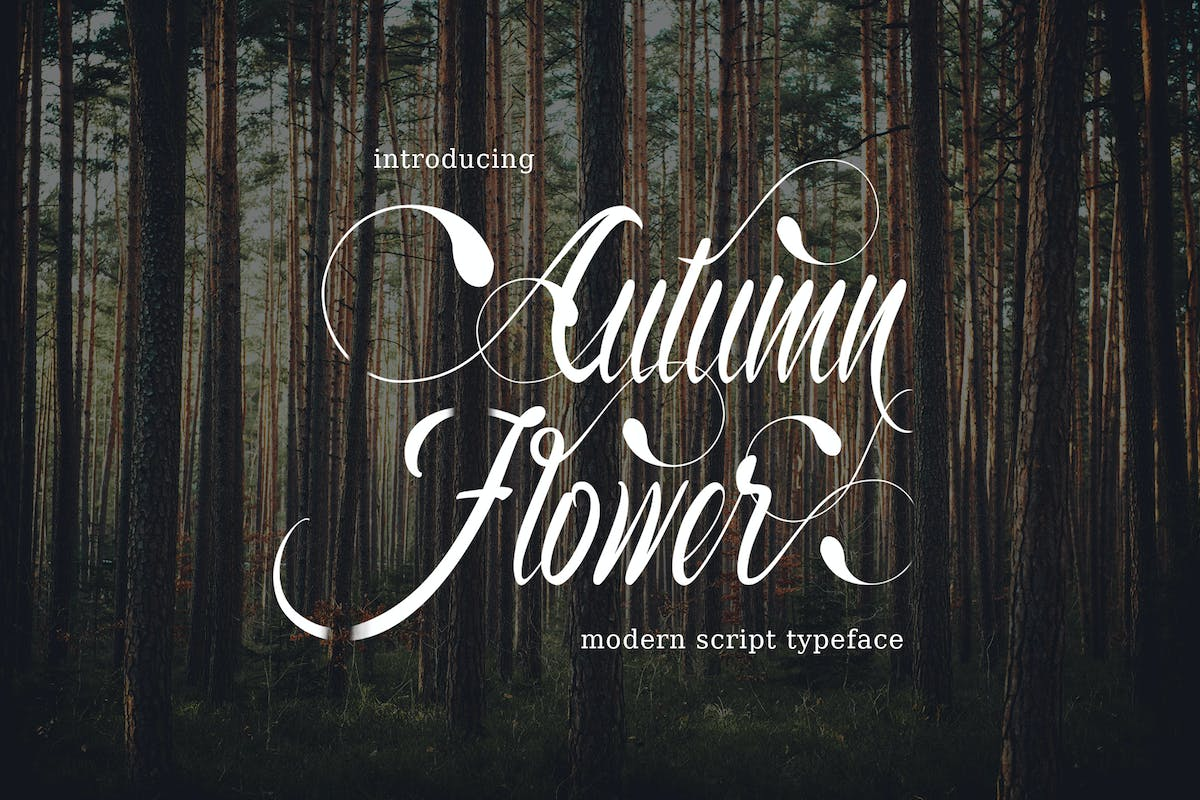 Download Autumn Flower Typeface by thirtypath by Unknow