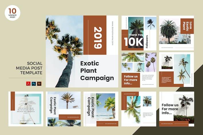 Thumbnail for Exotic Tropical Plant Social Media Kit PSD & AI