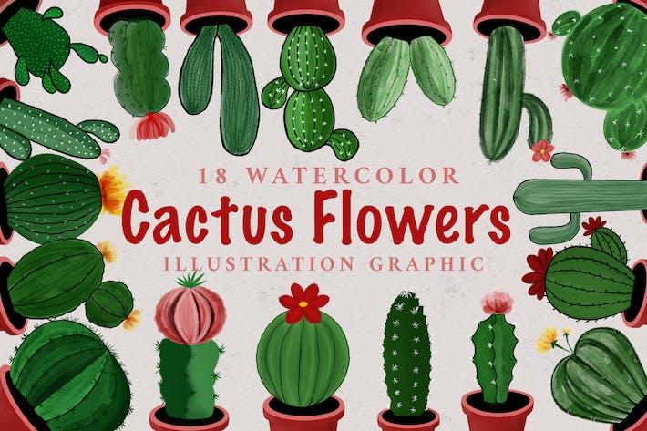 Thumbnail for 18 Watercolor Cactus