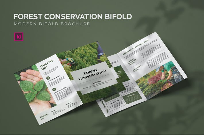 Thumbnail for Forest Conservation - Bifold Brochure