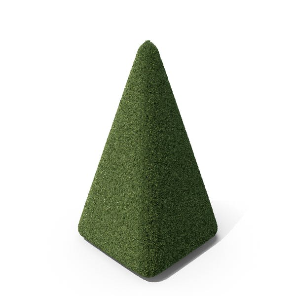 Topiary Pyramid