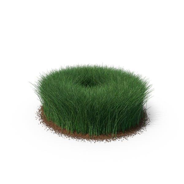 Grass & Dirt Shape Tall