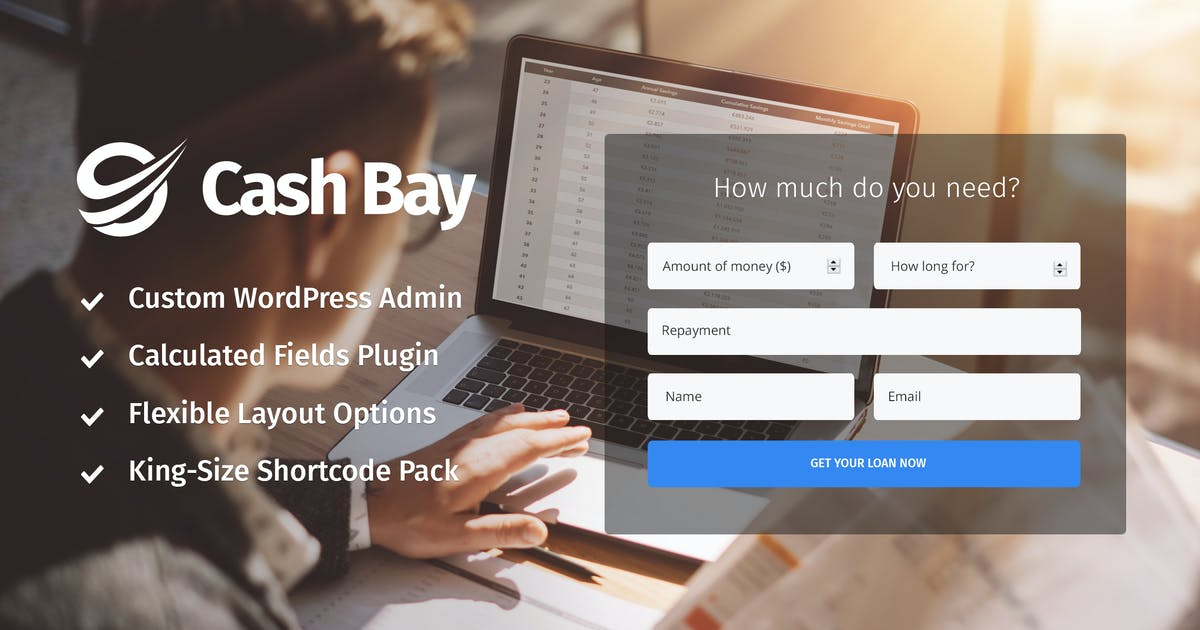 Download Cash Bay - Loan & Credit Money WP Theme by cmsmasters