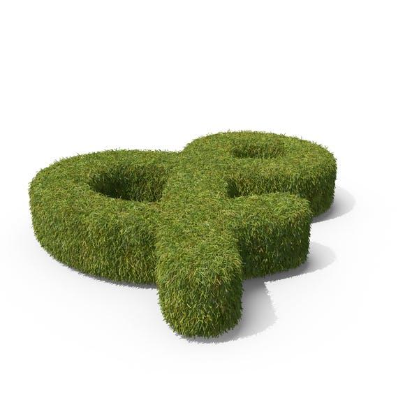 Hierba y símbolo en el suelo