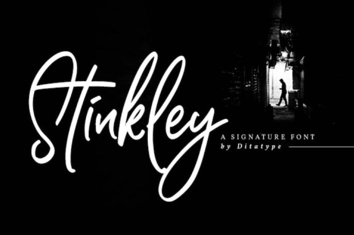 Thumbnail for Stinkley-Beautiful Handwritten Font